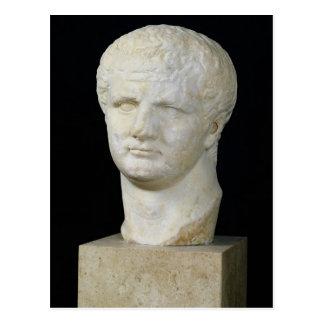 Head of Titus Postcard