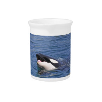 Head of whale killer beverage pitcher