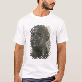 Head of young man, aka 'The Young Aquitaine T-Shirt