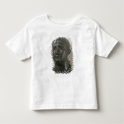 Head of young man, aka 'The Young Aquitaine Tee Shirts