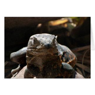 Head On Iguana Card