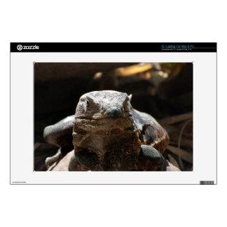 Head On Iguana Laptop Skins