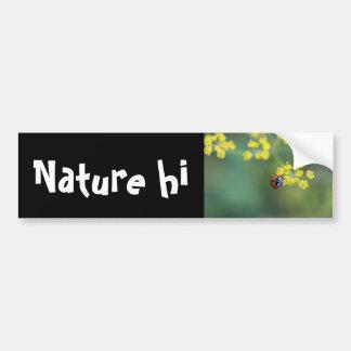 head on ladybug bumper sticker