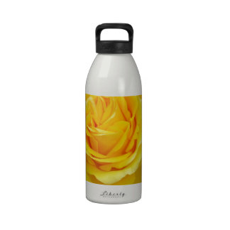 Head On View Of A Yellow Rose With Garden Water Bottles