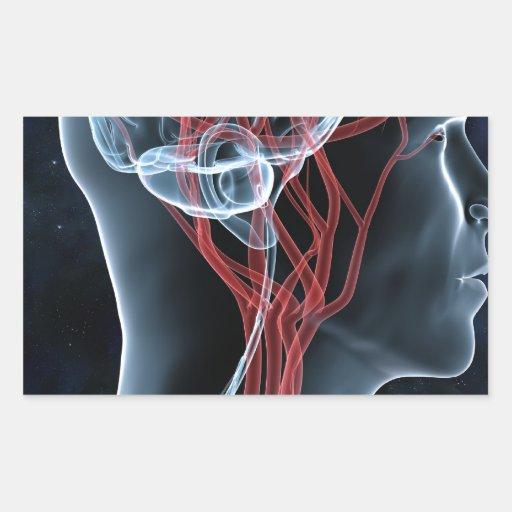 Head Rectangular Sticker