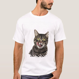 Head shot of a male domestic tabby cat licking T-Shirt