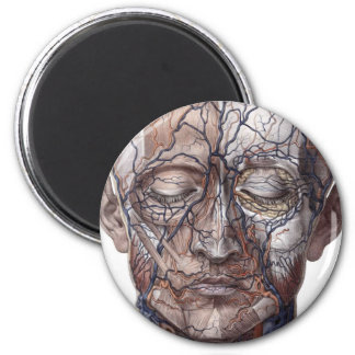 Head Veins and Muscles 2 Inch Round Magnet