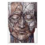 Head Veins and Muscles Greeting Card