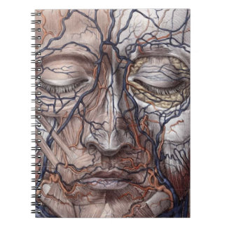 Head Veins and Muscles Notebook