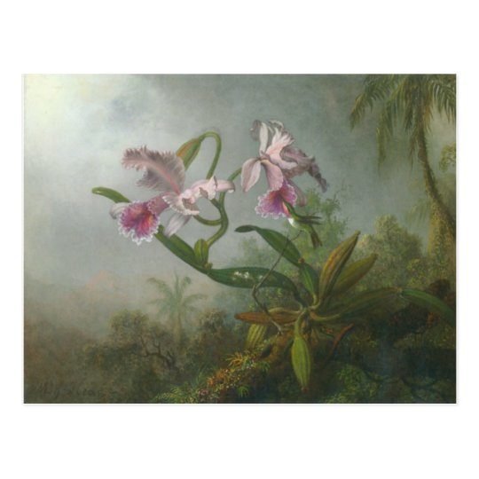 Heade - Two Orchids and a Humming Bird Postcard