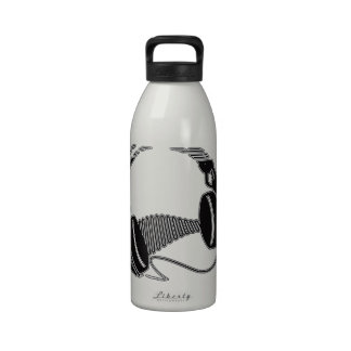 Headphones Water Bottles
