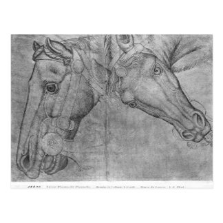 Heads of horses, from the The Vallardi Album Postcard