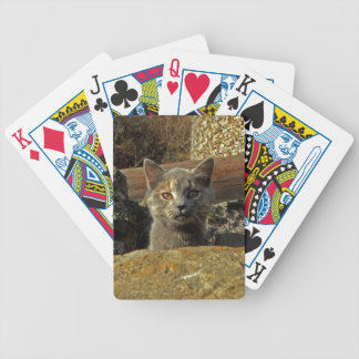 Heads Up Kitten Cat Playing Cards