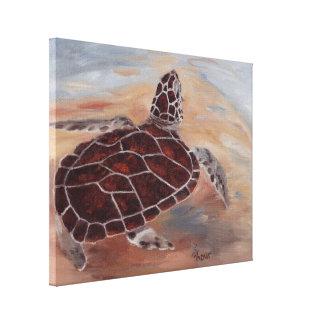 Head's Up Turtle Canvas Print