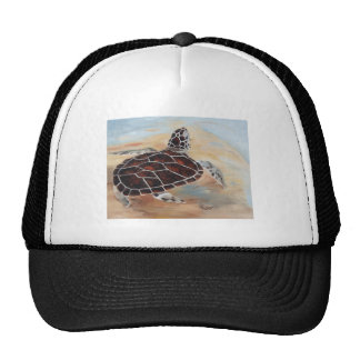 Head's Up Turtle Hat