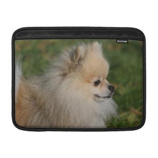 Headshot 2 de Pomeranian Funda MacBook