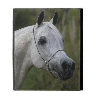 Headshot árabe 1 del caballo