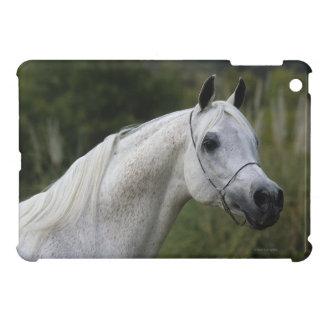 Headshot árabe 1 del caballo iPad mini cárcasa