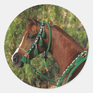 Headshot árabe del caballo con el freno etiquetas redondas