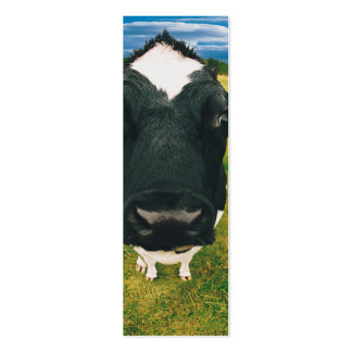 Headshot de la vaca frisia tarjetas de visita mini