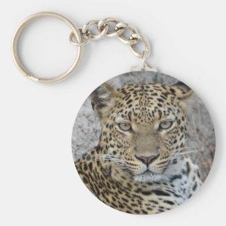 Headshot Tom Wurl.jpg del leopardo Llavero Redondo Tipo Chapa