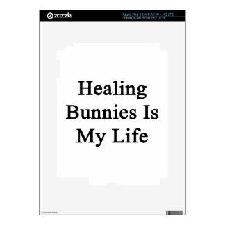 Healing Bunnies Is My Life Skin For iPad 3