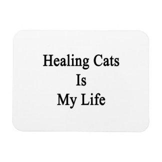 Healing Cats Is My Life Rectangular Photo Magnet