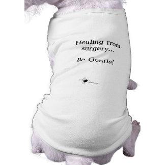Healing from Surgery...Be Gentle Dog T Shirt