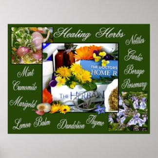 HEALING HERBS ~ Poster