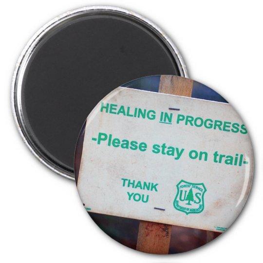 Healing In Progress Magnet