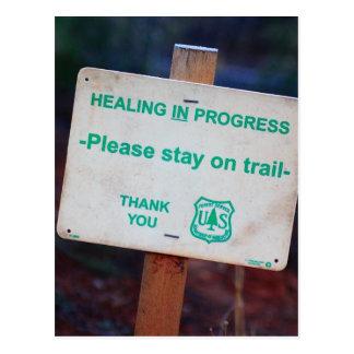 Healing In Progress Postcard
