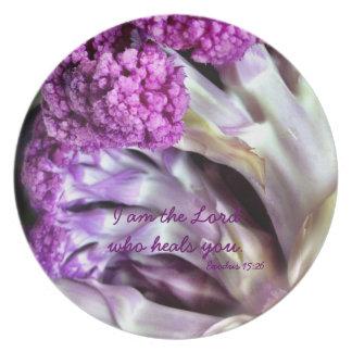 Healing Inspiration Melamine Plate