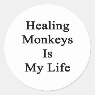 Healing Monkeys Is My Life Classic Round Sticker