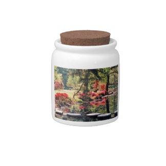 Healing Path Candy Jars
