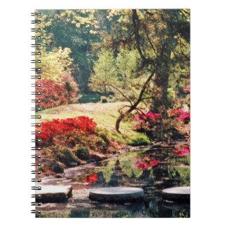 Healing Path Notebook