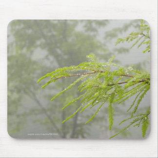 Healing Rain Mouse Pad