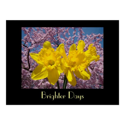 Healing Touch Art gifts Brighter Days Daffodils Print