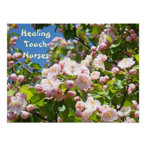 Healing Touch Nurses posters Pink Blossoms Nursing