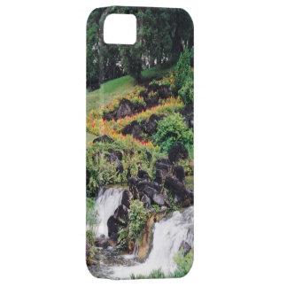 Healing Water iPhone 5 Case