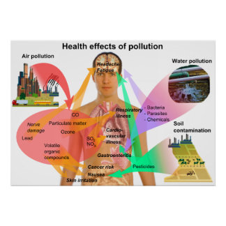 Health Effects of Pollution on the Human Body Poster