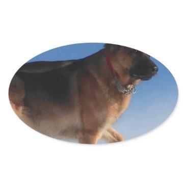Beach Themed Healthy And Happy German Shepherd Dog Oval Sticker