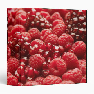 Healthy and nutritious red berries binder