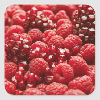 Healthy and nutritious red berries square sticker