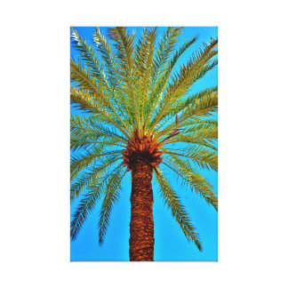 Healthy Date Tree Canvas Print