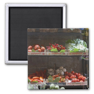 healthy fresh produce 2 inch square magnet