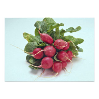 Healthy Radishes along with leaves Invite