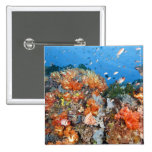 Healthy reef structure, Komodo National Park 2 Inch Square Button
