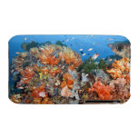 Healthy reef structure, Komodo National Park iPhone 3 Case-Mate Case