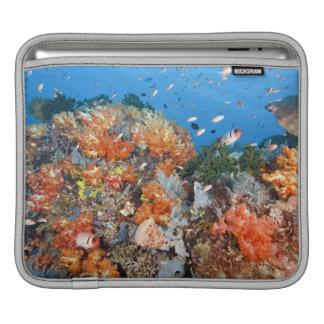 Healthy reef structure, Komodo National Park iPad Sleeve