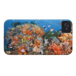 Healthy reef structure, Komodo National Park iPhone 4 Cover